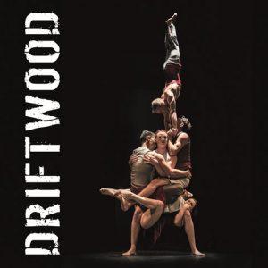 Casus Circus, Driftwood @ Flint  | Amersfoort | Utrecht | Nederland