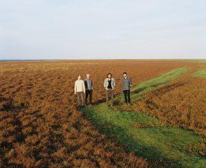 De Oudebildtdijk in Friesland, hier liggen de roots van Seewolf.f.